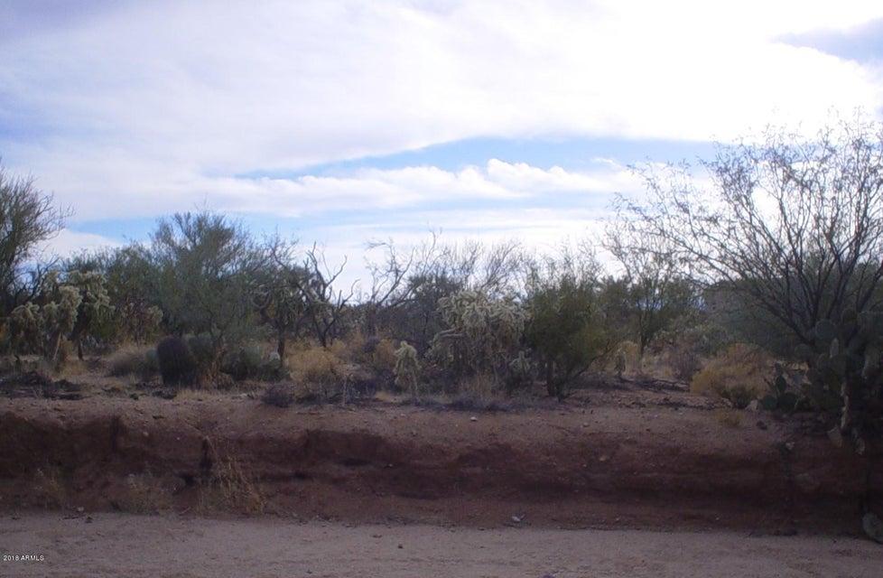 16222 W PINACATE Avenue Tucson, AZ 85736 - MLS #: 5726070