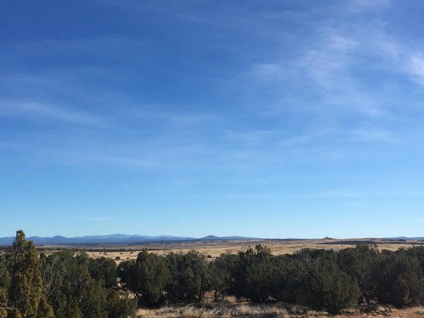 3857 Petersen Road Snowflake, AZ 85937 - MLS #: 5725067