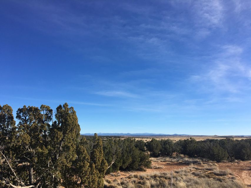 3869 Petersen Road Snowflake, AZ 85937 - MLS #: 5725063