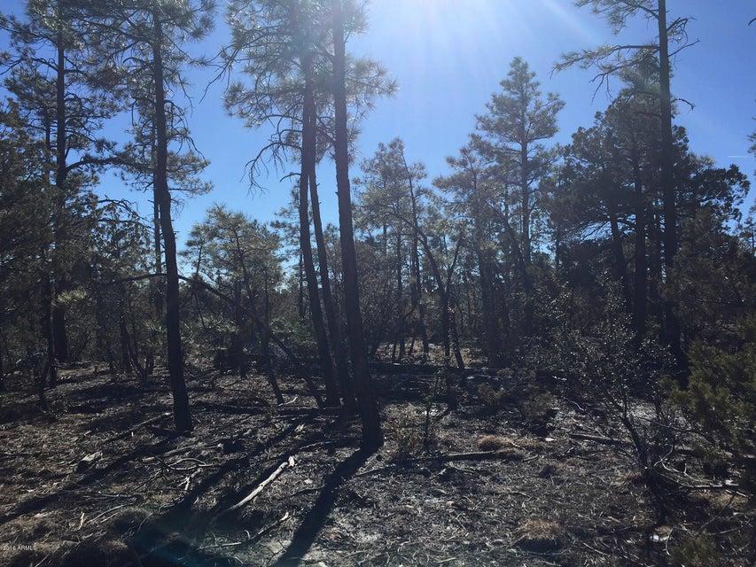 1525 S TWIN PEAK Trail Show Low, AZ 85901 - MLS #: 5726226