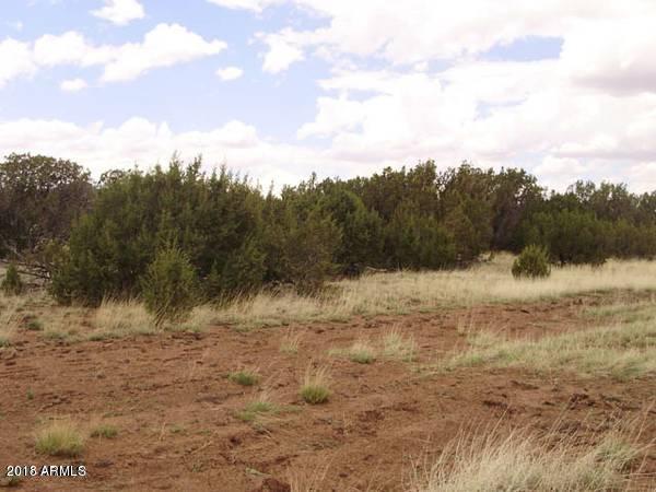 0000 Show Low Pines Show Low, AZ 85901 - MLS #: 5726405
