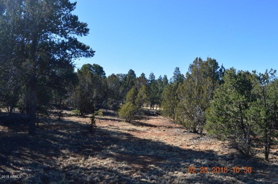 3242 Jeep Trail Overgaard, AZ 85933 - MLS #: 5726979