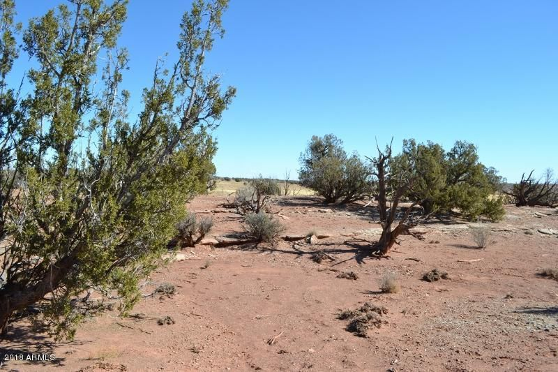 8667 ROCKIN R RANCH Trail Snowflake, AZ 85937 - MLS #: 5725343