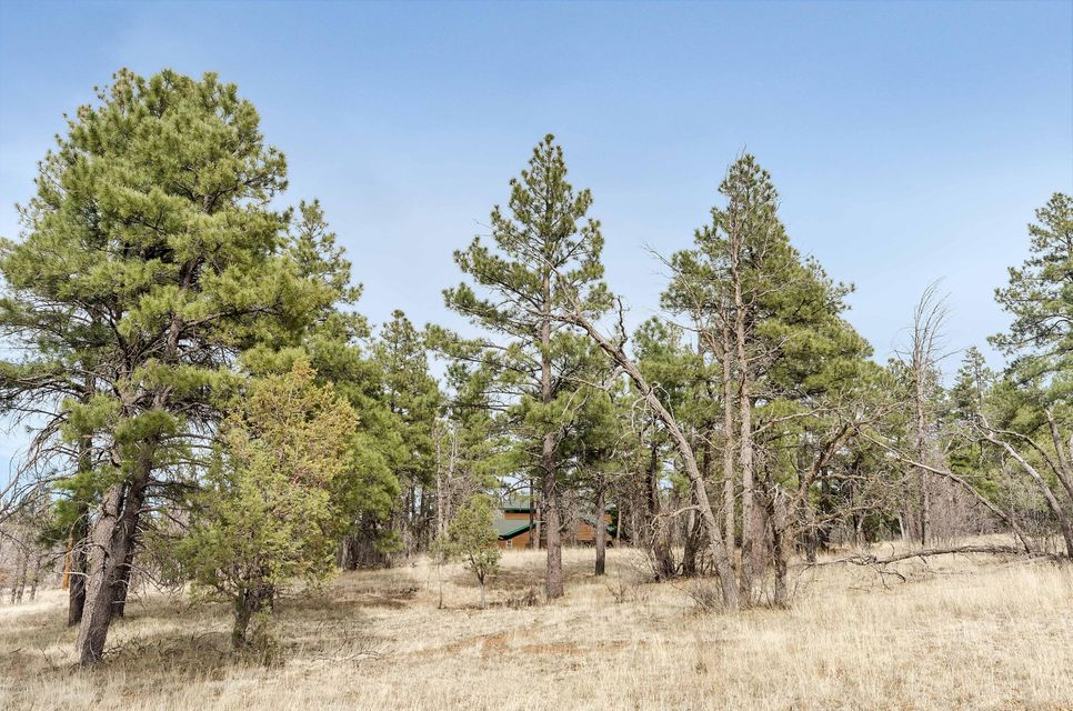 719 Old Standard Mill Road Show Low, AZ 85901 - MLS #: 5738913