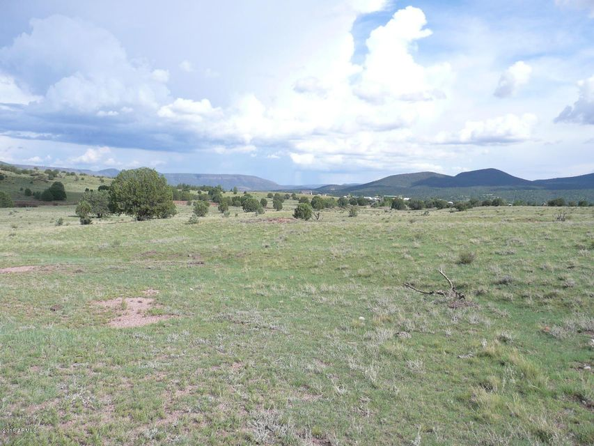 580 N Winchester Drive Young, AZ 85554 - MLS #: 5737902