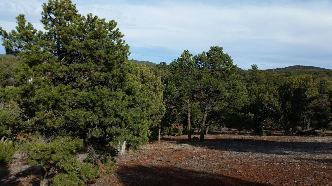 94 N MOUNTAIN PINE Road Vernon, AZ 85940 - MLS #: 5744258