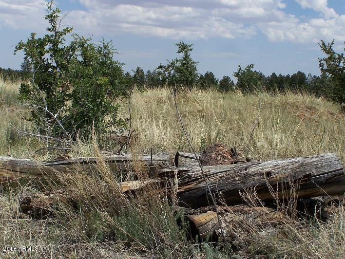 2716 Trevor Way Overgaard, AZ 85933 - MLS #: 5745807