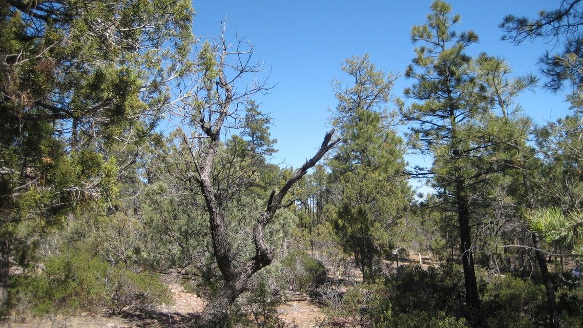 1870 S Pleasant View Drive Show Low, AZ 85901 - MLS #: 5746037