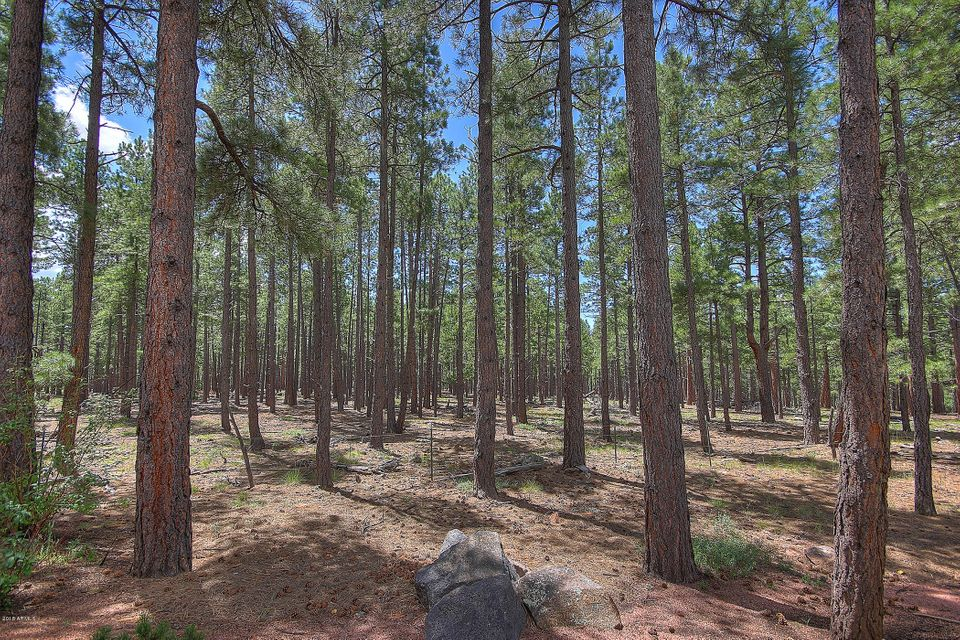 4429 Griffiths Spring Flagstaff, AZ 86005 - MLS #: 5747363