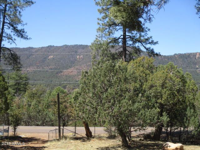 4089 N MISTLETOE Drive Pine, AZ 85544 - MLS #: 5749168