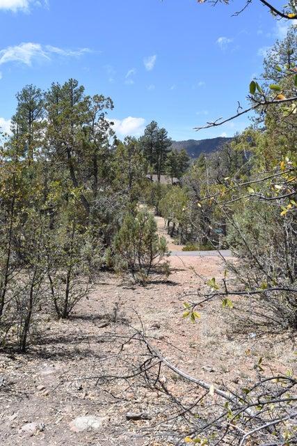 3479 N Wilderness Trail Pine, AZ 85544 - MLS #: 5762564