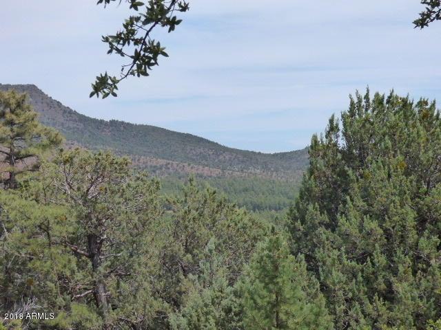 0 Drumecho Circle Pine, AZ 85544 - MLS #: 5776521