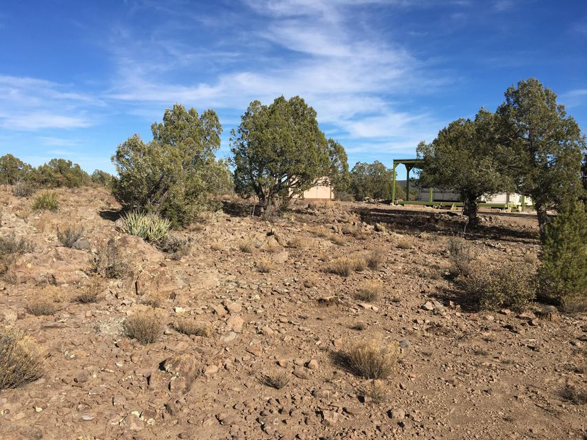 Lot 196 Willows Ranch Road Kingman, AZ 86401 - MLS #: 5684944
