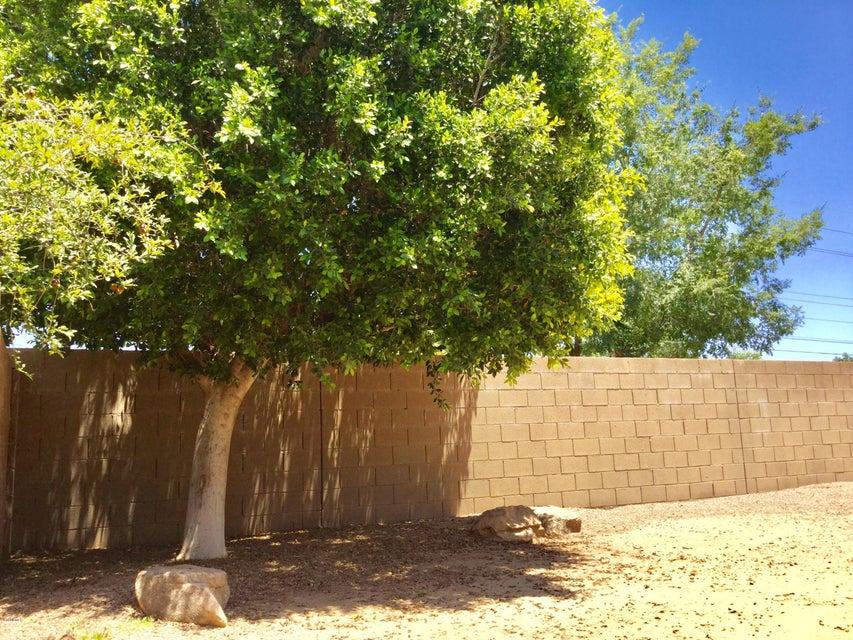 1340 E FOLLEY Place Chandler, AZ 85225 - MLS #: 5778371