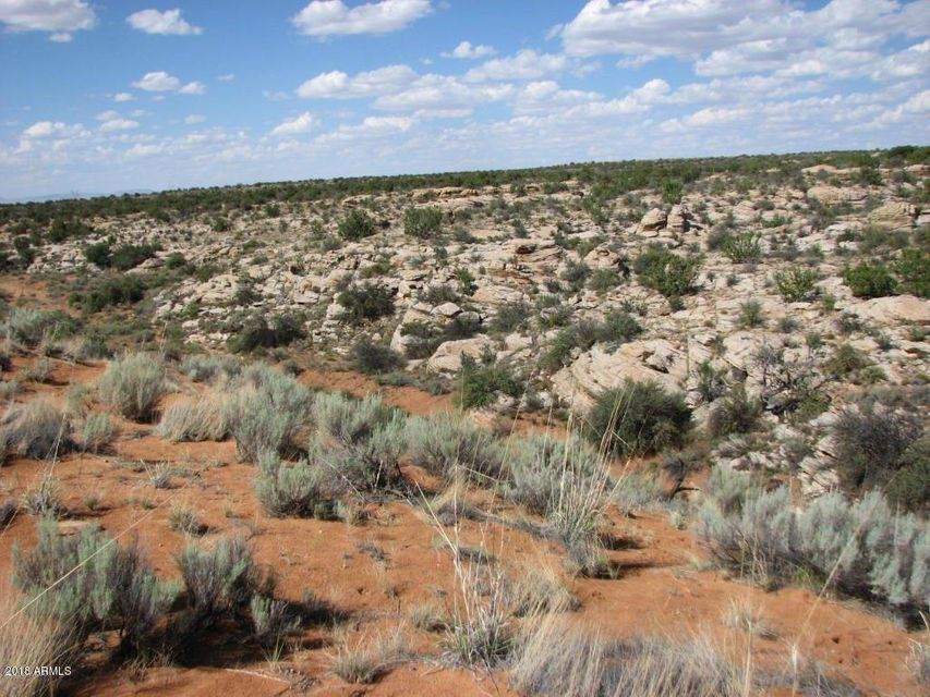 Lot 280 Chevelon Canyon Ranch Overgaard, AZ 85933 - MLS #: 5724011