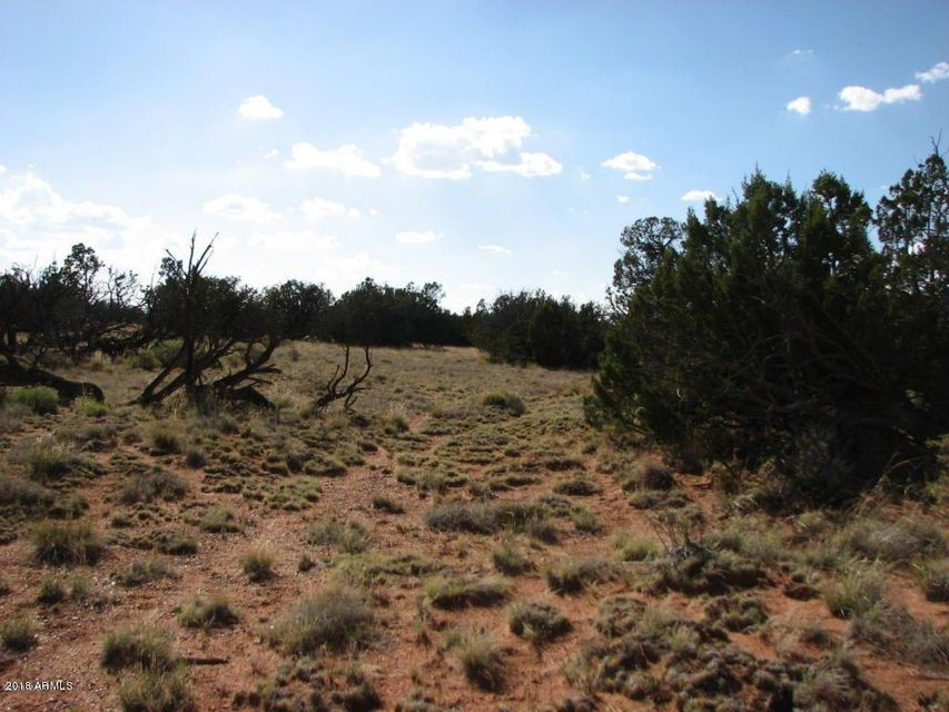 Lot 279 Chevelon Canyon Ranch Overgaard, AZ 85933 - MLS #: 5724000