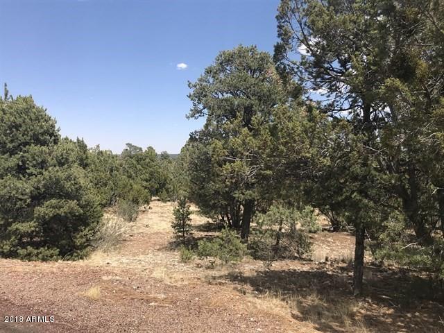 1565 GREEN HAVEN Circle Heber, AZ 85928 - MLS #: 5788849