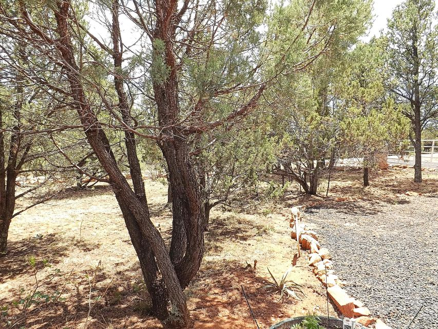 3088 PONDEROSA Road Overgaard, AZ 85933 - MLS #: 5796294