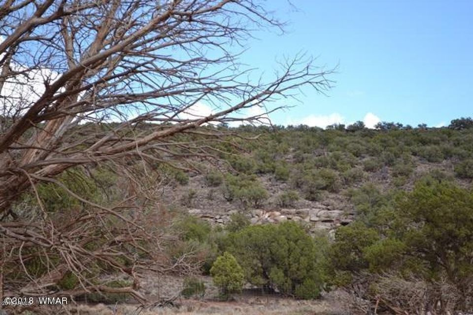 9390 E San Carlos Lane Snowflake, AZ 85937 - MLS #: 5796333