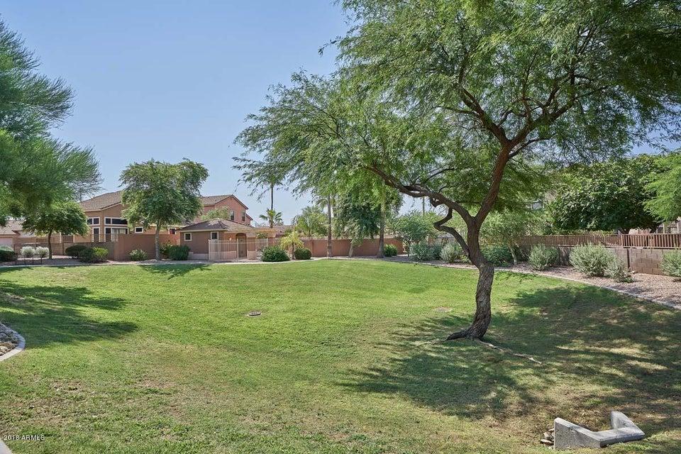6730 E PRESTON Street Unit 14 Mesa, AZ 85215 - MLS #: 5801465