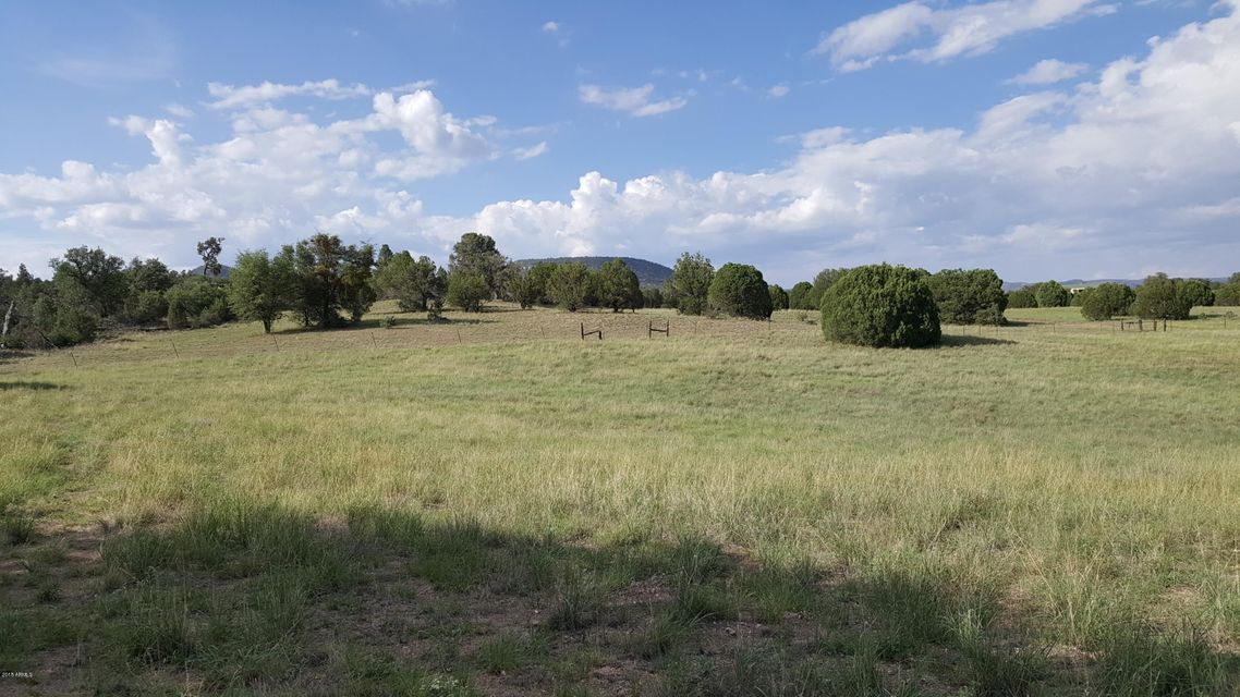 145 W Mail Trail Road Young, AZ 85554 - MLS #: 5722093