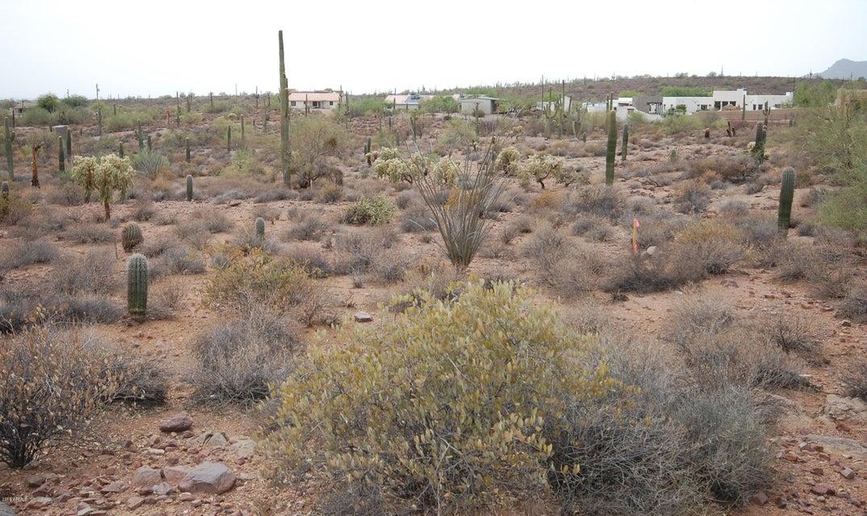 5000 E RUBY JANE Lane Apache Junction, AZ 85119 - MLS #: 5801610