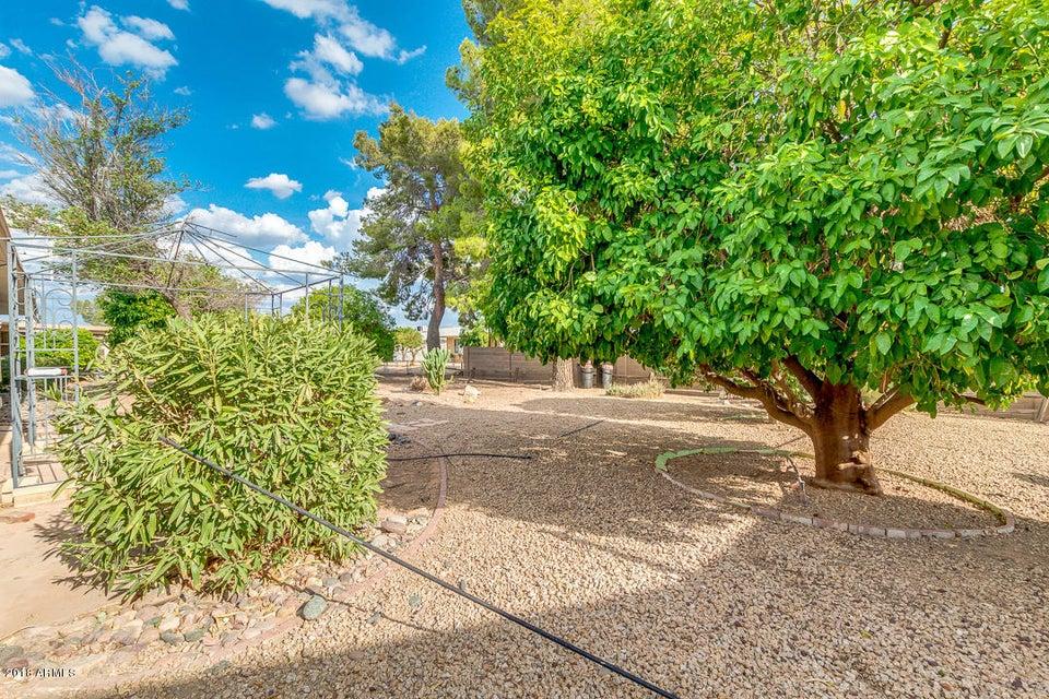 10313 W CHAPARRAL Drive Sun City, AZ 85373 - MLS #: 5811558