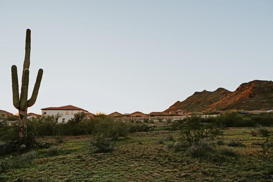 8290 W WHITEHORN TRAIL, PEORIA, AZ 85383 – Nina Berry | Realtor