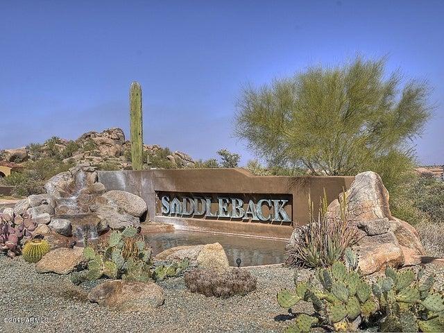 Saddleback at Troon
