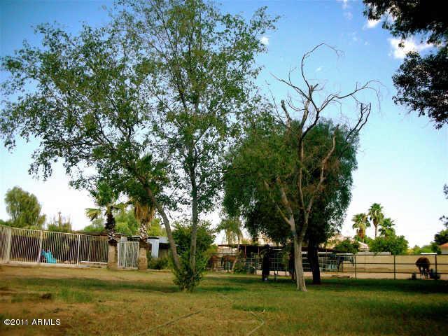 6232 E MESCAL Street, Scottsdale, AZ 85254
