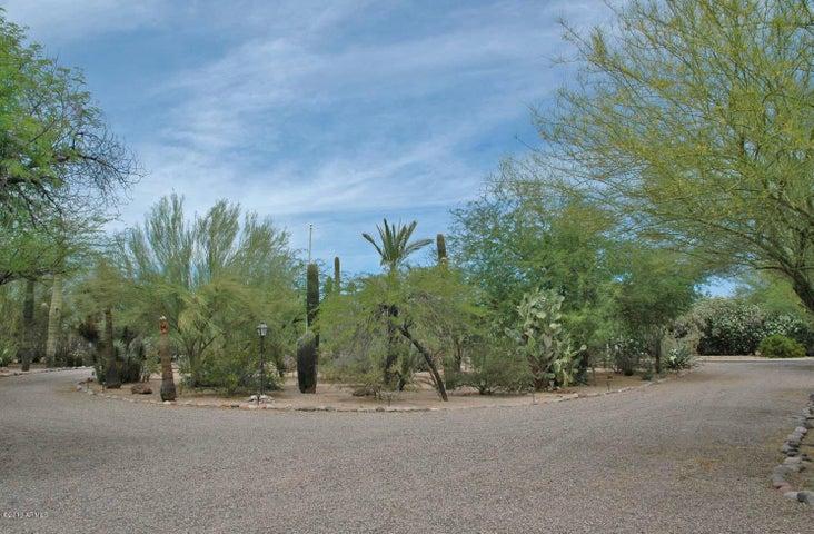 Large circular driveway with mature desert landscaping.