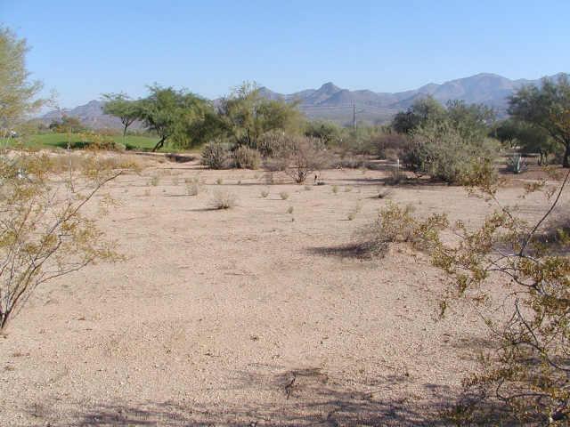 19034 E Box Bar Trail, 577, Rio Verde, AZ 85263