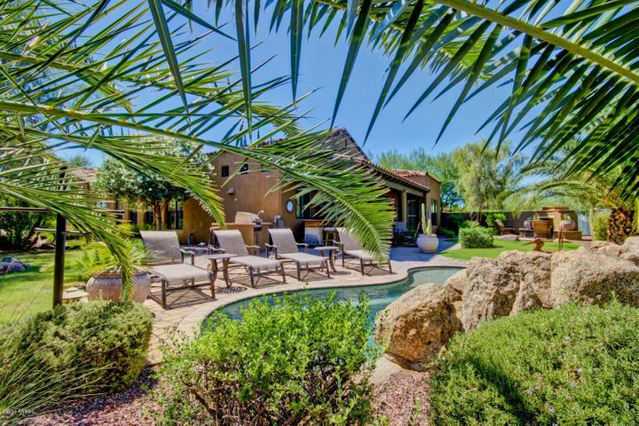 Beautiful backyard oasis.