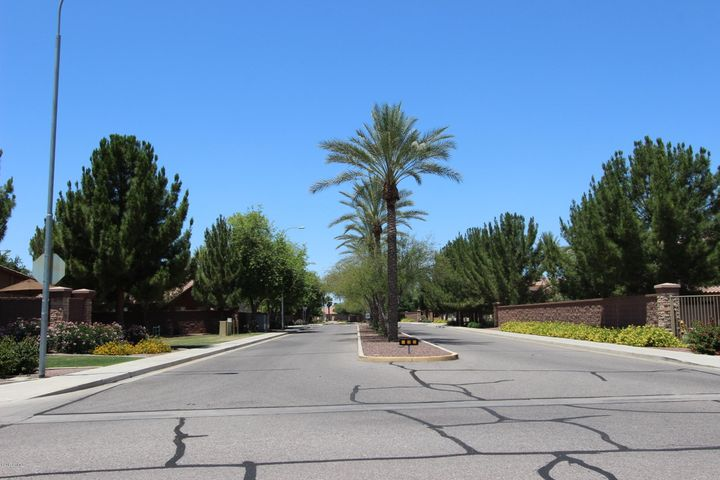 Palm lined streets