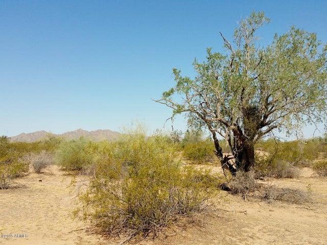 0 N Shirley Road, 13, Maricopa, AZ 85139