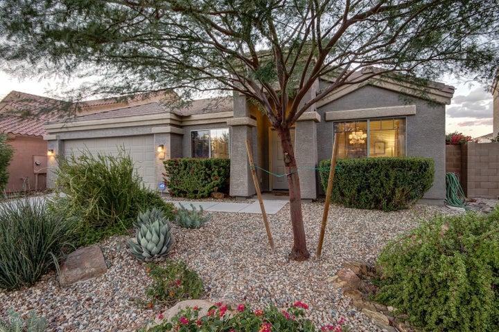 23630 N 24th Terrace, Phoenix, AZ 85024
