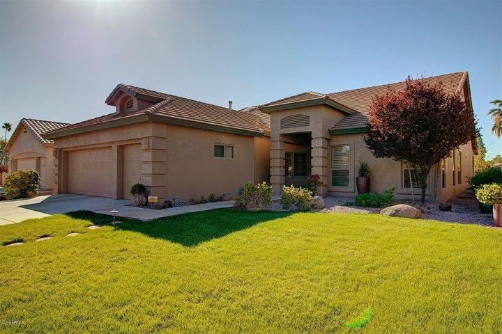 10039 E NACOMA Court, Sun Lakes, AZ 85248