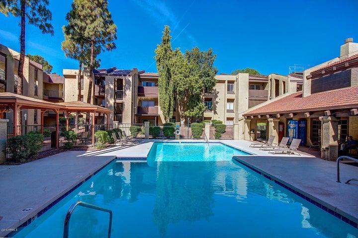 461 W Holmes Avenue, 212, Mesa, AZ 85210