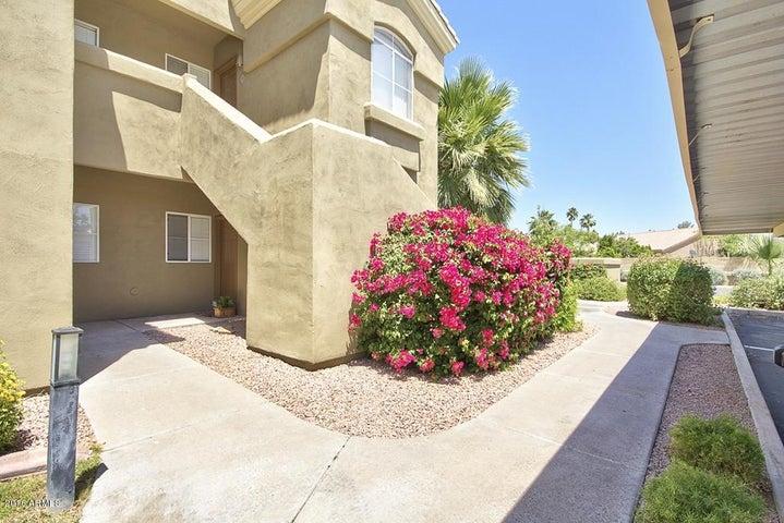 5335 E SHEA Boulevard, 1081, Scottsdale, AZ 85254