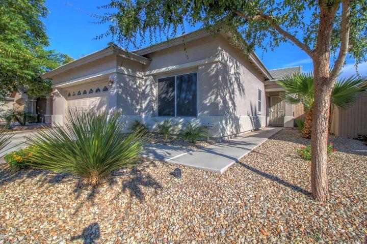 11725 W MADISON Street, Avondale, AZ 85323