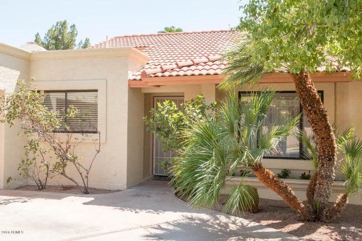 311 E PINON Way, Gilbert, AZ 85234