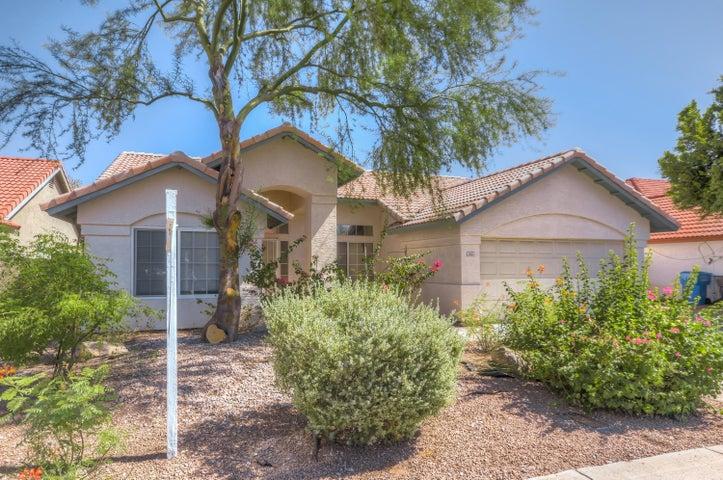 626 W MESQUITE Street, Gilbert, AZ 85233