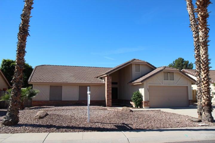 431 E Meadows Lane, Gilbert, AZ 85234