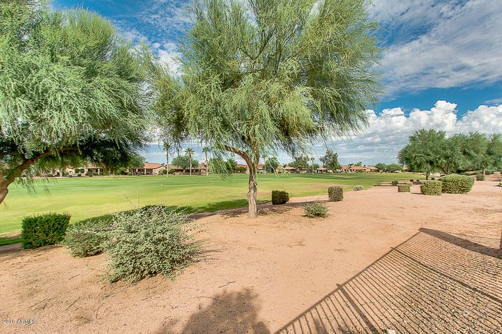 23922 S STONEY PATH Drive, Sun Lakes, AZ 85248