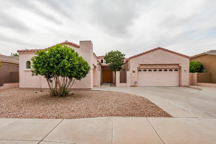 393 W CAROB Drive, Chandler, AZ 85248