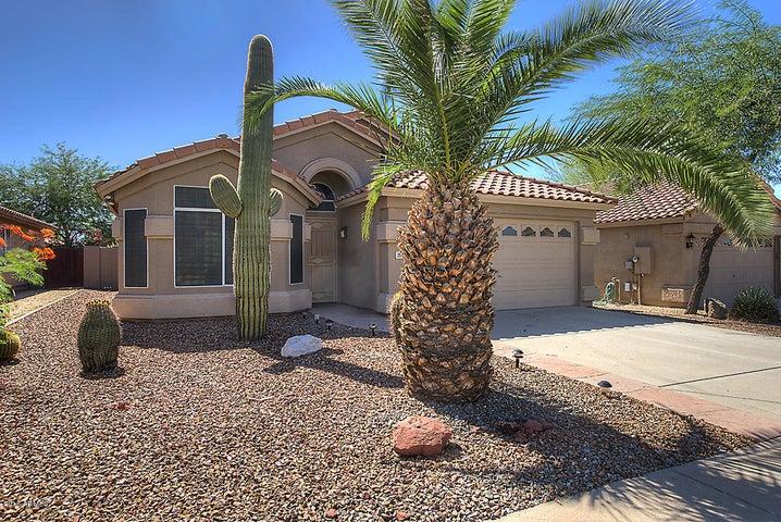 7217 E SOFTWIND Drive, Scottsdale, AZ 85255
