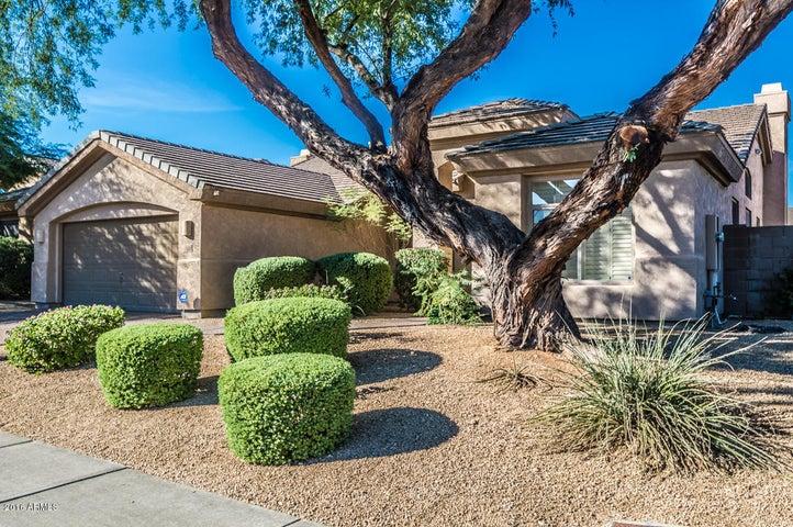 6504 E NISBET Road, Scottsdale, AZ 85254