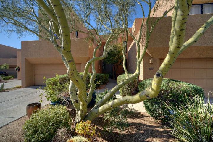 25555 N WINDY WALK Drive, 6, Scottsdale, AZ 85255