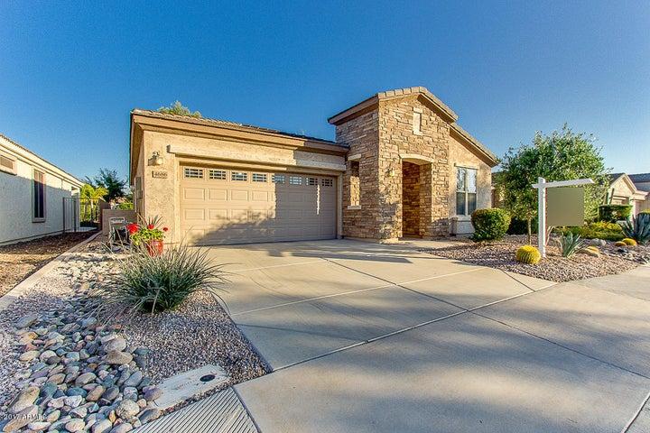 4686 E NARROWLEAF Drive, Gilbert, AZ 85298