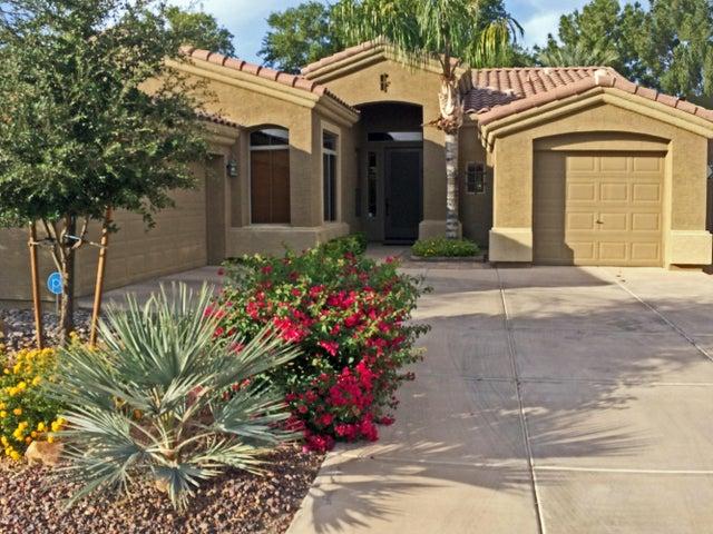 762 W CITRUS Way, Chandler, AZ 85248